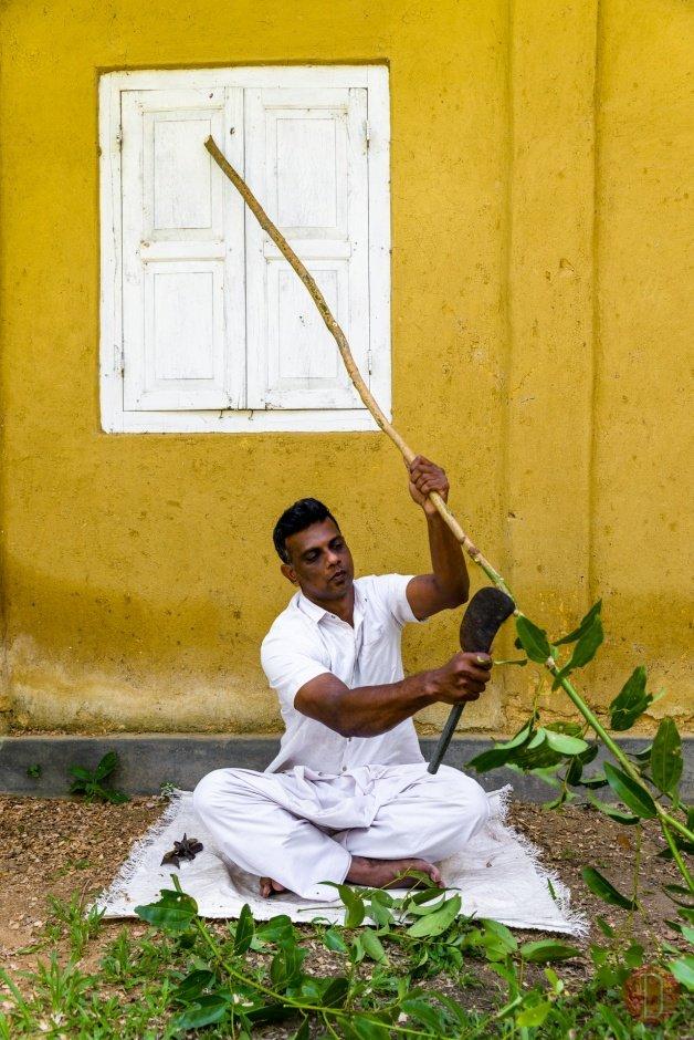 Amangalla, Sri Lanka - Cinnamon Experience